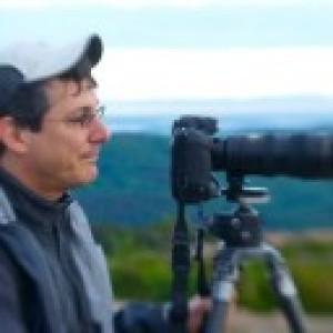 Mark Menditto
