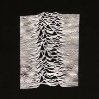 unknownpleasures81