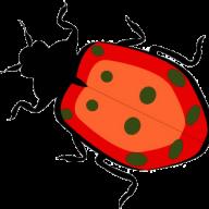 apiocera