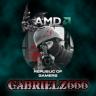 GabrielZ666