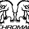 Chromagnum