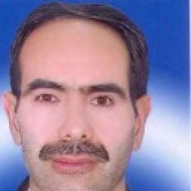 Farhad Mirzaei2