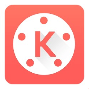 kinemasterpc guide's picture