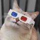 3DCat's avatar