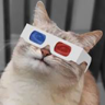 3DCat