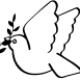 marcypress