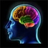 Autonomous Mind