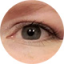 avatar for tlee0708