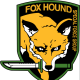 Foxhound_Veteran