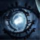 MyPictures's avatar