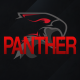 GamingPanthers