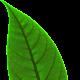 Jernej Azarija's avatar