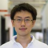 Zhan Huang