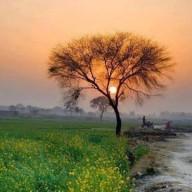 چنچل راج
