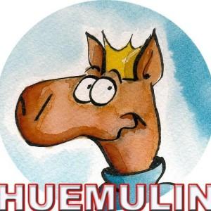 Avatar de huemulin