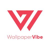 Avatar of Wallpaper Vibe