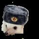 CommieHedghehog