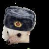 CommieHedgehog