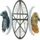 ravenhawks magazine