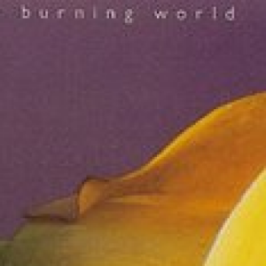 BurningWorldBargains at Discogs