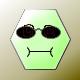software system developer