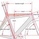 cycledan