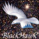 Blackhawk123