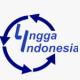 LGI Network