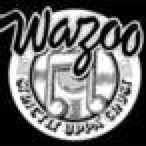 wazoo_records at Discogs