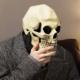 tuxxi's avatar