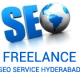 Seo Freelancer In Hyderabad