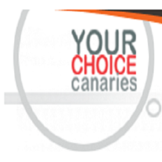 Your Choice Canaries
