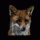 KrazyTheFox's avatar