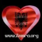 Photo of Zemra