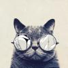 PavelMV avatar