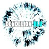 Dendelion Blu