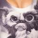 GizmoLeFou's avatar