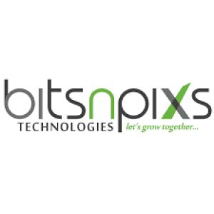 Avatar of bitsnpixs