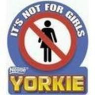 YorkshireNerd