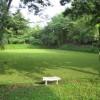 รูปภาพของNittaya Sornsuk