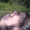 View XanderSuperWanderer's Profile