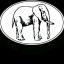 Oval_Elephant