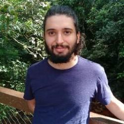 Alex Veloso da Silveira
