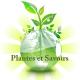 Plantes et savoirs