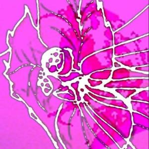 Profile picture for cyri elle