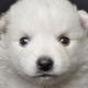 Hirokazu Takahashi's avatar