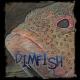 View dimfish's Profile