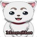 MonteShot