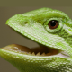 View Merfnad's Profile