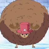 Armando Alexis Herra Cortez